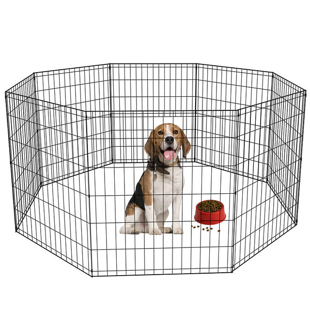 when to stop crate training