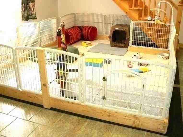 Playpen training a puppy! Use the playpen right