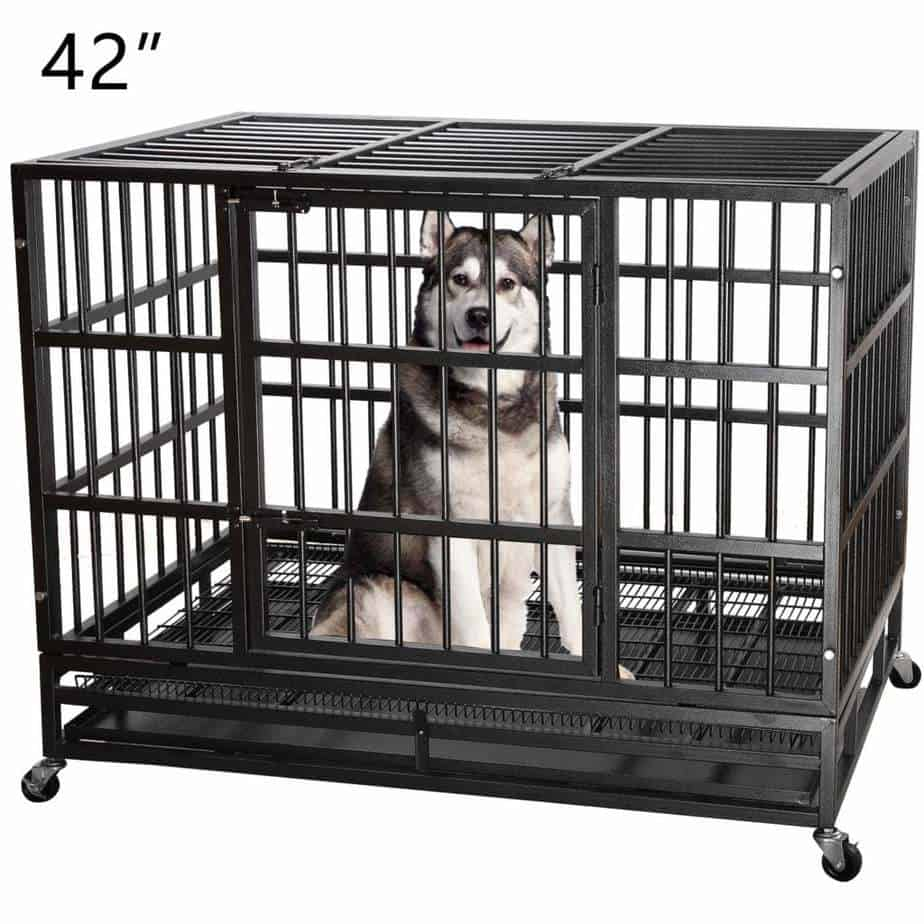 Crate training a husky for beginners 1